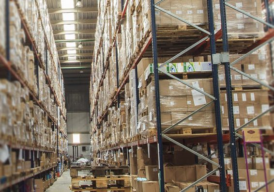 Temperature controlled warehouse with storage pallet shelves